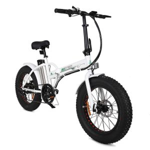 ECOTRIC 20 New Fat Tire Folding
