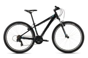 Raleigh Talus