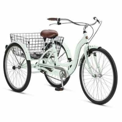 Adult Schwinn Tricycle