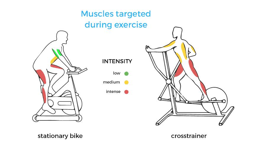 A Whole Body Workout